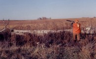 bird hunting in kansas